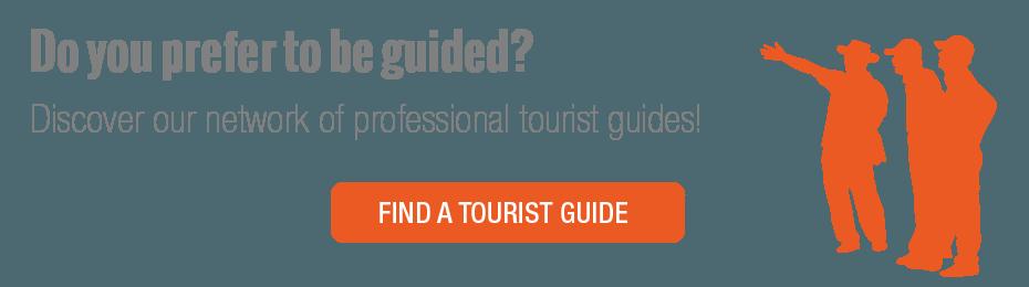 visitas guiadas profesionales en Turín